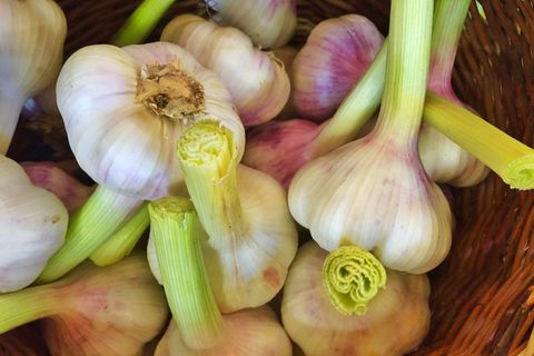 directly above view of fresh garlic in wicker basket