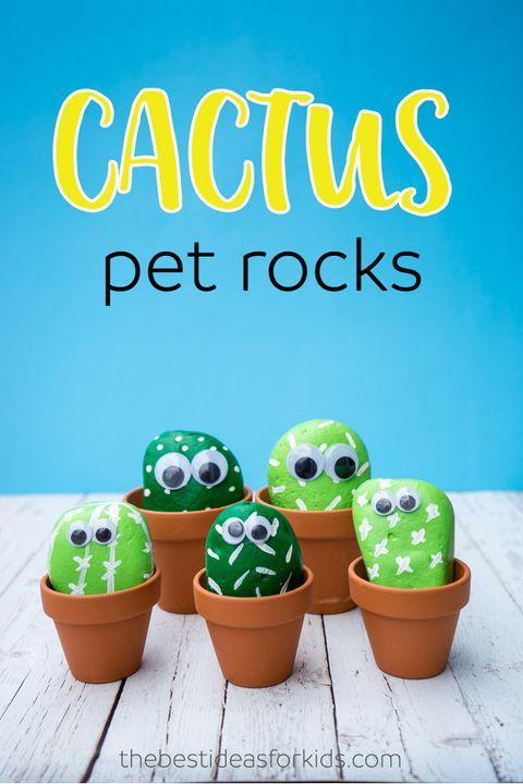 cactus pet rocks   summer crafts