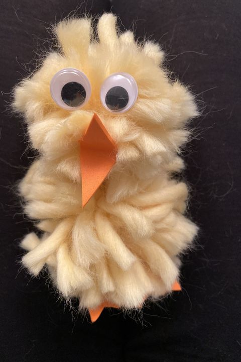 Stuffed toy, Fur, Beak, Toy, Bird, Plush, Bird of prey, Feather, Owl,